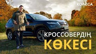 Škoda Kodiaq. Араны ашылған аю