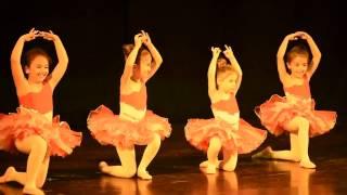 Aytunç Bentürk Dans Akademi gösteriler 2016 BALE 4-6 YAŞ MİNİK PAPATYALAR