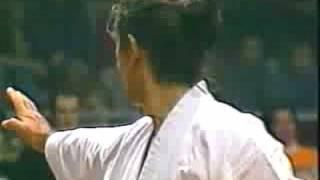 The very best of Shotokan karate