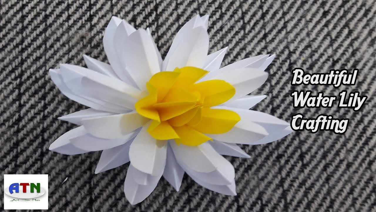 Seerose Falten Water Lily Folding Art How To Make Beautiful Water Lily With Color Papers Origami Paper Crafts