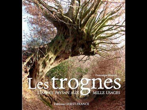 Les trognes, arbres paysans - Dominique Mansion