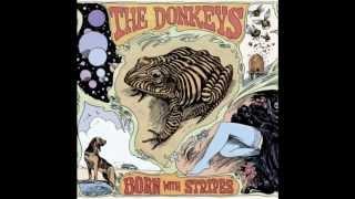 The Donkeys - I like the way you walk