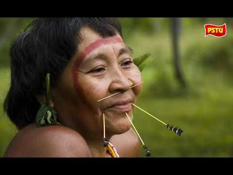 Garimpeiros atacam Povos Indígenas Yanomami