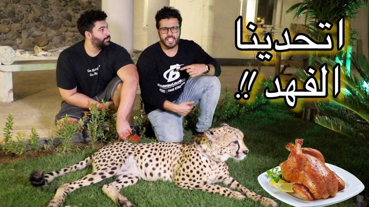 اتحدينا اسرع حيوان في العالم الفهد - سريع في الاكل!! | Cheetah food Challenge