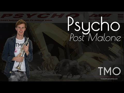Post Malone - Psycho (TMO Cover)