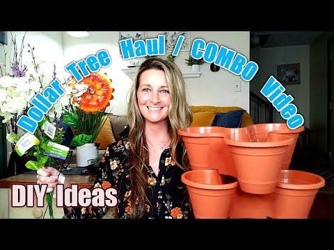 Dollar Tree Haul / ALL NEW/DIY Ideas/ Combo Video Haul* Jan 5