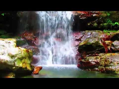 Waterfall Lagoon in Rainforest- 1,5+HOURS LUSH WATERFALL Nature Sounds #8 - Costa Rica