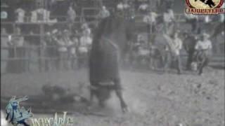 ¡¡QUE JUGADON!! Gato Jr. Tetecala vs el Muchacho Alegre de Rancho el Canelo.