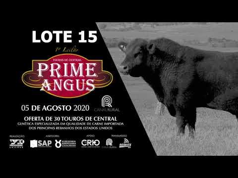LOTE 15   BLACK OPAL TEI906 DRY AGED Prod  Agência El Campo