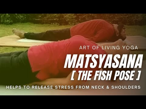 matsyasana fish pose yoga pose  youtube