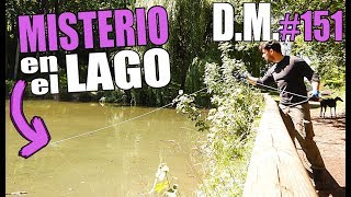 MYSTERY AND DRAMA, fishing with SUPER neodymium MAGNET, Magnet Fishing - Detección Metálica 151
