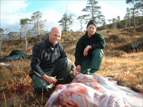 Fishing and hunting in pristine wilderness in Norway