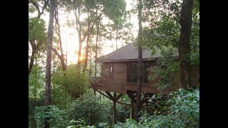 The Tamara Coorg- Sustainable & Responsible