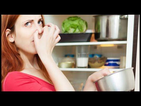 Как убрать запах протухшего мяса из холодильника