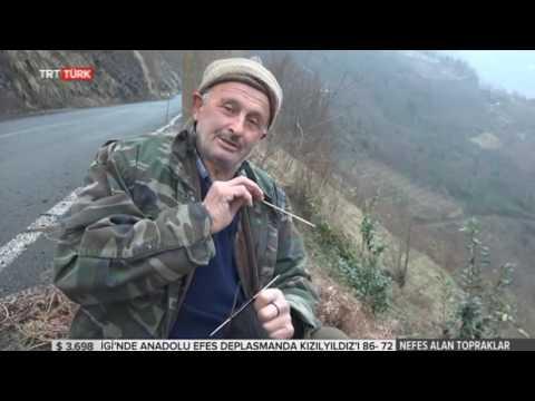 Nefes Alan Topraklar TRT