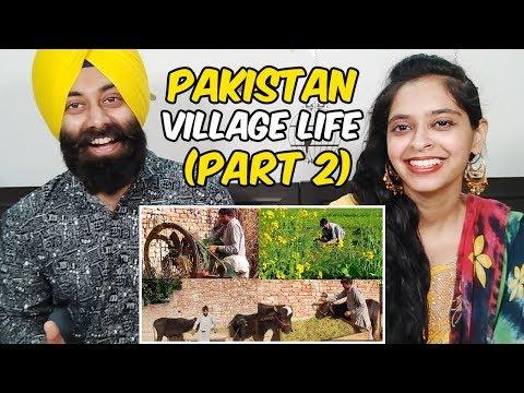 Indian Reaction On Pakistan Village Life Daily Routine (Part 2) | PunjabiReel TV