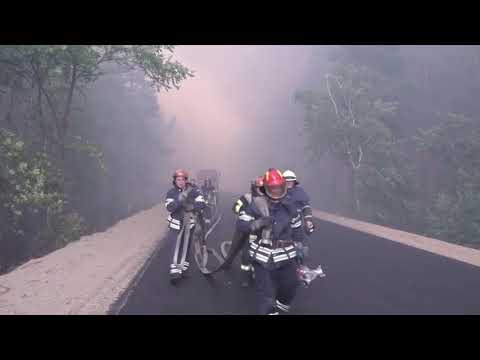 CXID.info: Пожар. Северодонецк. Волчье и Смоляниново часть #5
