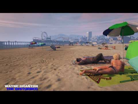 Video Game Ambience Asmr  - Santa monica beach sunset birds waves wind lights