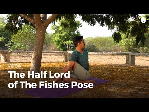 Learn the Half Lord of the Fishes Pose Ardha Matsyendrasana   Yoga