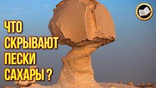 ПУСТЫНЯ САХАРА. Удивительные факты о пустыне Сахара. Великая Цивилизация Сахары