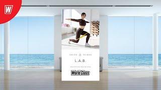 L A B с Екатериной Малыгиной 2 февраля 2021 Онлайн тренировки World Class