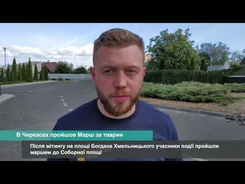 Телеканал АНТЕНА: Черкаські зооактивісти провели марш захисту прав тварин