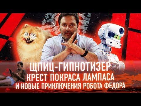 Шпиц-гипнотизер, крест Покраса Лампаса и новые приключения робота Федора // Минаев