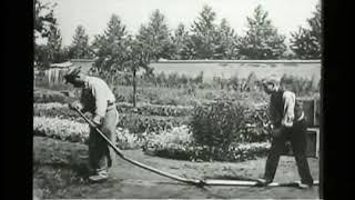 First Comedy Film - L'Arroseur Arrosé   (1895)