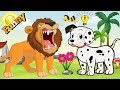 Funny Cartoon for Children | Cartoons for Kids | Funny Dogs Cartoons Collection 2018