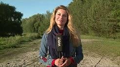 WELT WETTER: Schöne Aussichten für Pfingsten