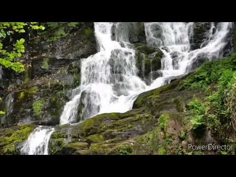 Calm Music for Sleep - Stress Relief Music, Mind Relaxing Music, Study Relaxing Music