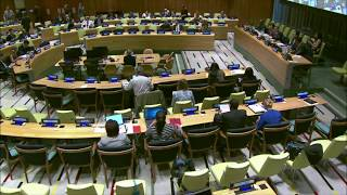 Νέα Υόρκη: Διακοινοβουλευτική Επιτροπή ΟΗΕ για την Παγκόσμια Μετανάστευση.