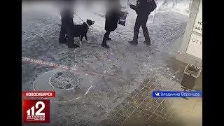 Полицейский VS Бойцовская собака. Начало скандального конфликта попало на видео!