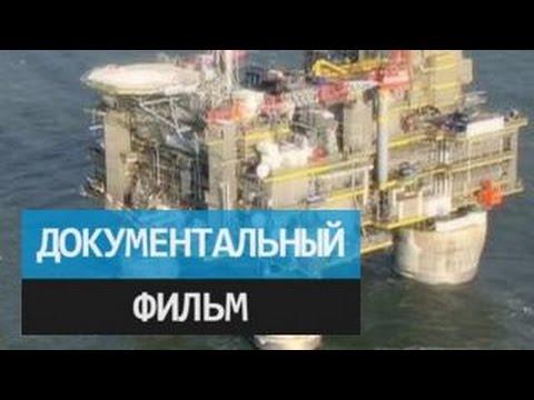Видео: Золотое дно Охотского моря. Документальный фильм Олега Солдатенкова