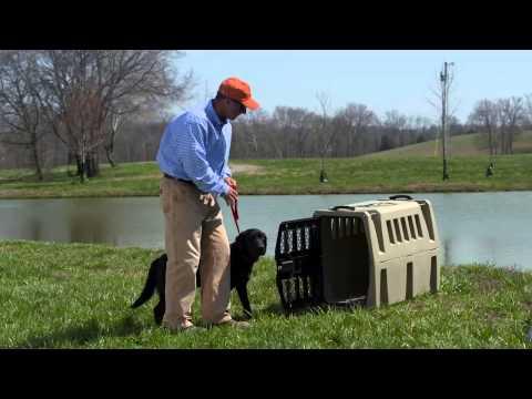 Scheels Dog Kennel