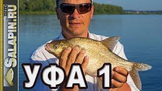 Рыбалка фидером на реке Белая, день первый [salapinru]