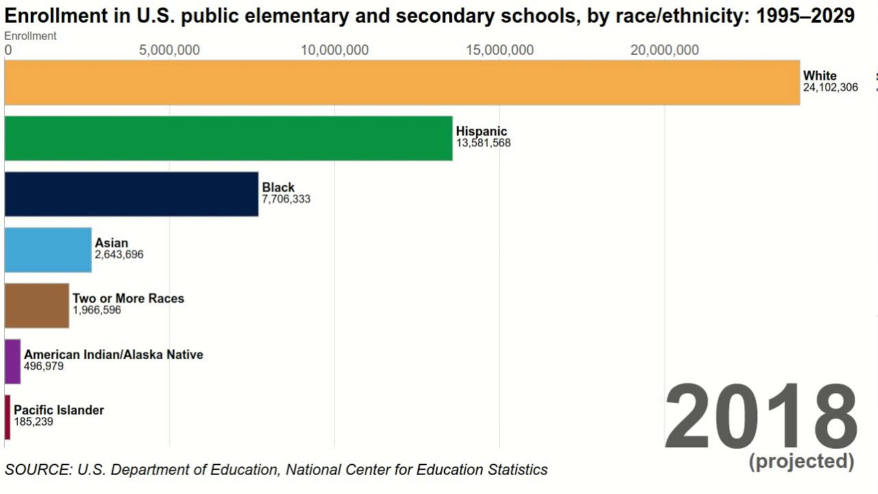 african american statistics education