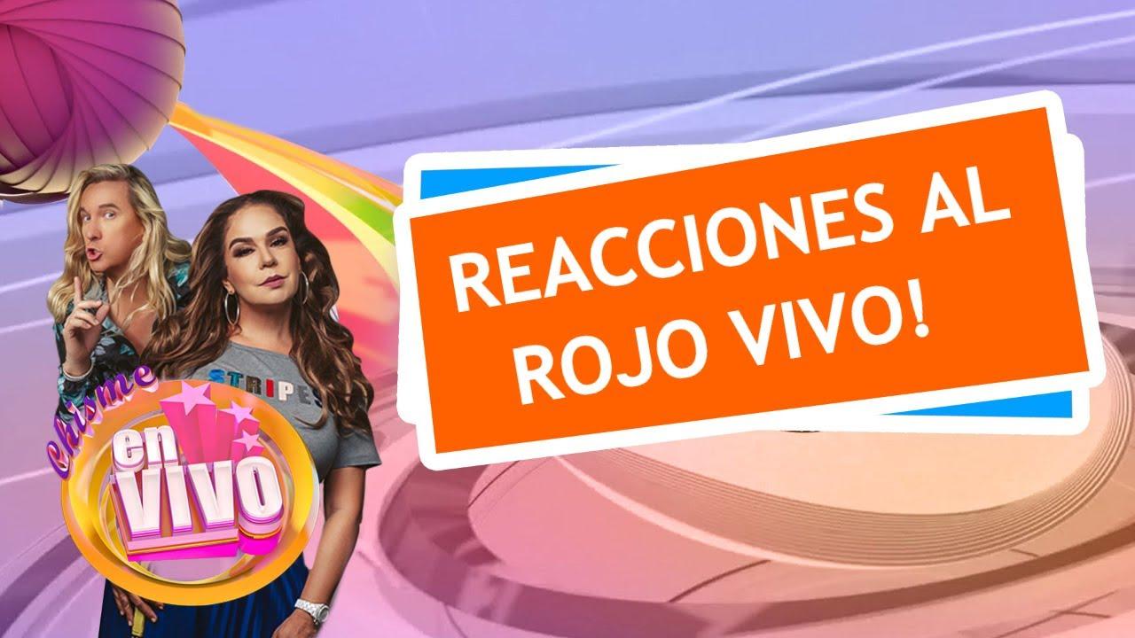 MARIA CELESTE habla tras su salida de Telemundo | Chisme En Vivo