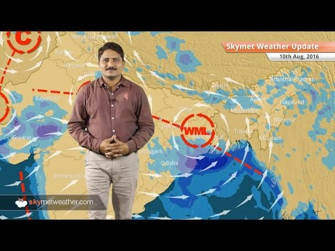 Weather Forecast for Aug 10: Heavy rains to lash Rajasthan, MP, UP, Jharkhand, West Bengal