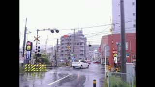 JR横須賀線のオーバーハングの踏切を集めてみた