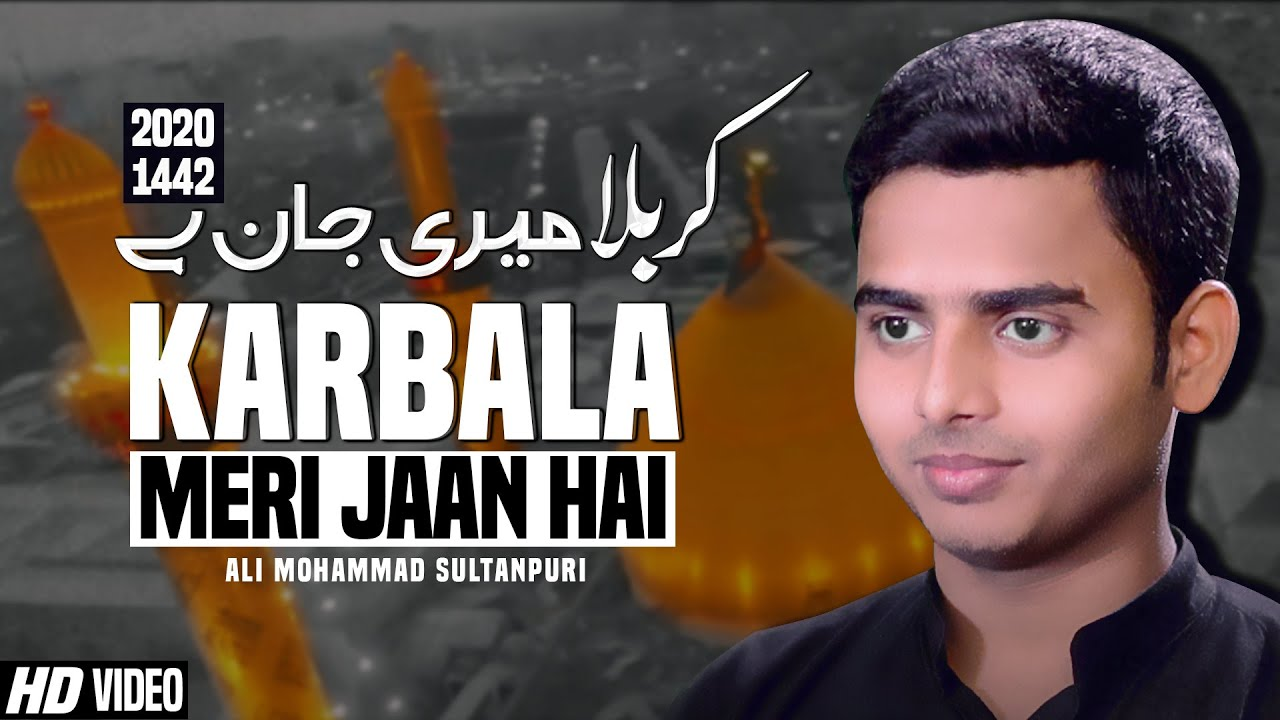 Nohay 2020 | Karbala Meri Jaan Hai | Ali Mohammad Sultanpuri Noha | New Noha 2020 | New Noha Karbala