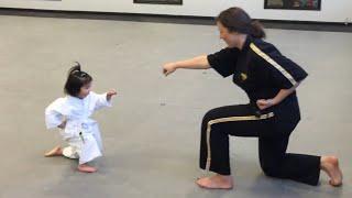 Three Year Old Taekwondo Master