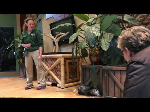 OWH Exploring students report at the Henry Doorly Zoo & Aquarium