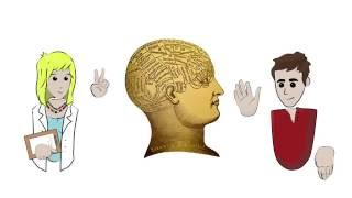 What Is That? - Phrenology