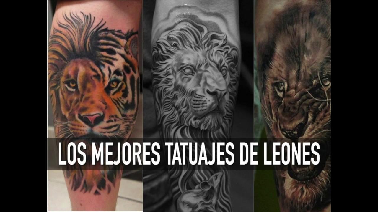 Los Mejores Tatuajes De Leones Youtube