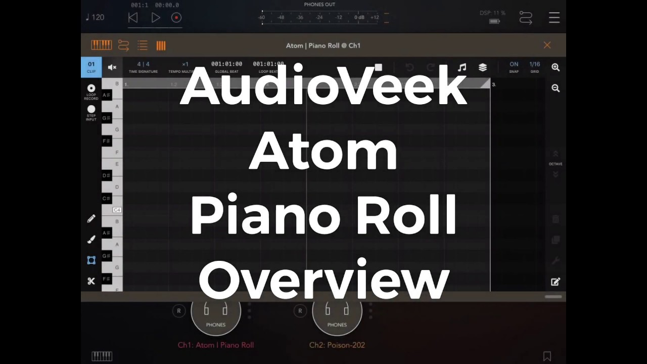 Atom | Piano Roll by Victor Porof | discchord