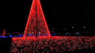 Asheville NC Spectacular Light Show: Shadrack