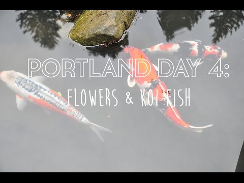 Portland Day 4: Flowers & Koi Fish