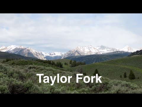 Hiking in the Taylor Fork - Yellowstone Ecosystem