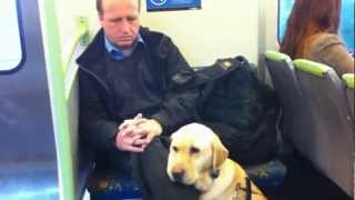 Drawing on a train of a blind man and guide dog